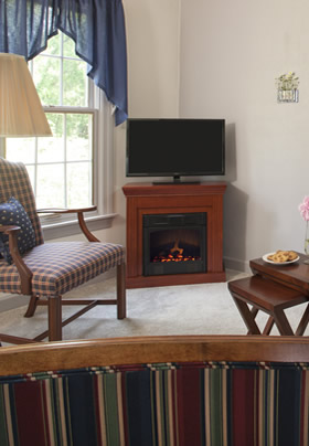TV and faux fireplace in Magnolia Suite